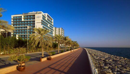 отели в ОАЭ Aloft-Palm-Jumeirah-4